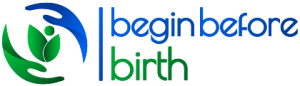 Beginbeforebirth.org