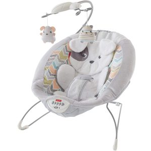 Fisher-Price Sweet Little Snugappupy Bouncers Best Baby Bouncer