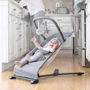 Go With Me Alpine Deluxe Baby Bouncer